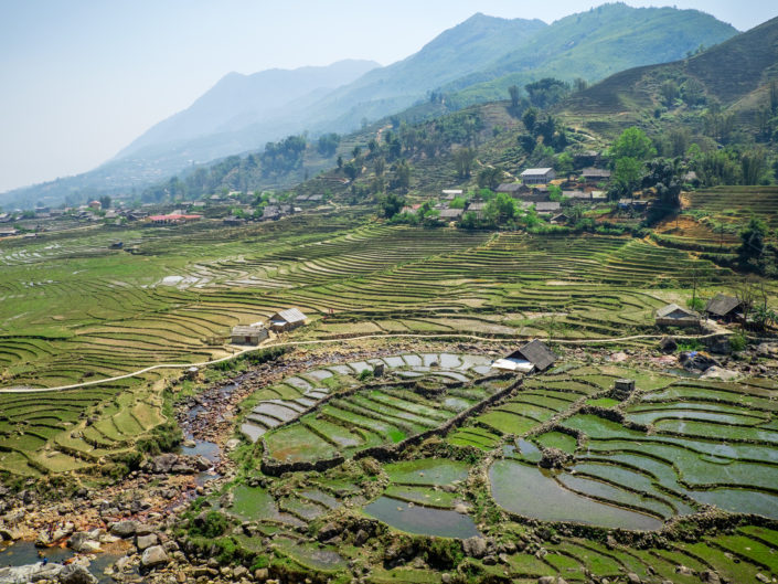 Sapa rice fields in Vietnam